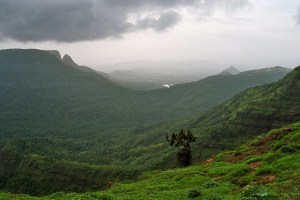 Rain falls near a village in the Western Ghats, India. Stanford scientists studied Indian monsoon data for extreme wet and dry spells that occur only a few times a year but have a large impact on agriculture. Credit: Stephane Pasteur